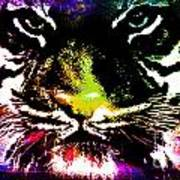 Colorful Tiger Abstract Grunge Face Poster