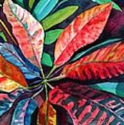 Colorful Tropical Leaves 2 Poster