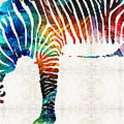 Colorful Zebra Art By Sharon Cummings Poster
