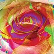 Colorfull Rose Poster