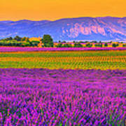 Colors Of Provence Poster