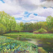 Colors Of Spring At Millbrook Marsh Poster