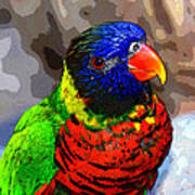Colors Of The Lorikeet Poster