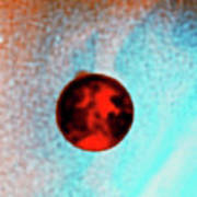 Coloured Hubble Image Of A Volcanic Plume On Io Poster