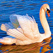 Colourful Swan Poster