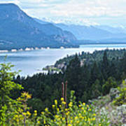 Columbia Lake Which Is Source Of The Columbia River-bc  Poster