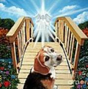 Come Walk With Me Over The Rainbow Bridge Poster