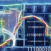 Computing - Fractalius 2 Poster