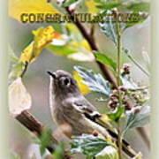 Congratulations - Kinglet Poster