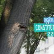Constitution Ave 2200 Poster by Angelia Hodges Clay