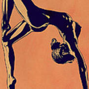 Contortionist Poster