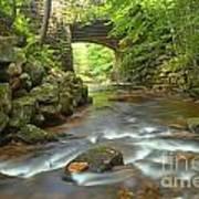 Cook Forest Stream Under The Bridge Poster