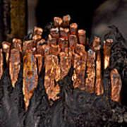 Copper Candles--junkyard Macro No. 3 Poster