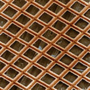 Copper Electron Micrograph Grid Poster
