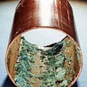 Copper Pipe Deposits Poster