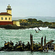 Coquille River Lighthouse And Birds Poster