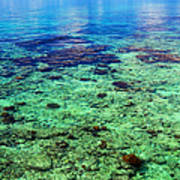 Coral Reef Near The Island At Peaceful Day. Maldives Poster