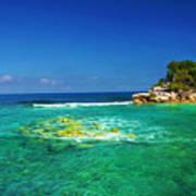 Coral Seas Haiti Poster