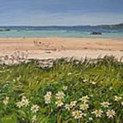 Coral Strand Summers Day Connemara Ireland Poster