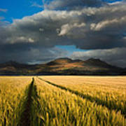 Cornfield Mountains Poster