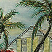 Cottage Rooftops And Palm Trees Harbor Island Poster