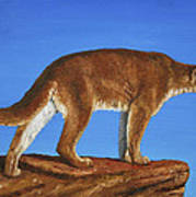 Cougar Cliff Poster