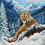Cougar Sedona Red Rocks  Poster