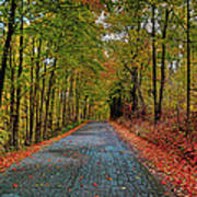 Country Lane In Autumn Poster