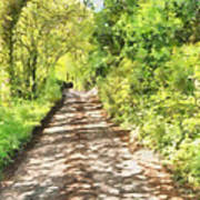 Country Lane Watercolour Poster