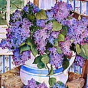 Country Lilacs Poster by Sherri Crabtree