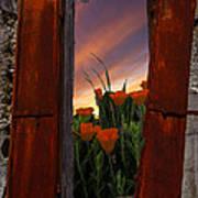 Courtyard Window Poster