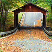 Covered Bridge On Pierce Stocking Scenic Drive Within Sleeping B Poster