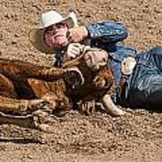 Cowboy Has Steer By Horn Poster