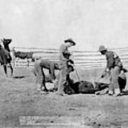 Cowboys, 1888 Poster