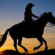 Cowgirl At Sunrise Poster