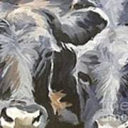 Cows In Waiting Poster