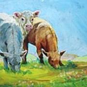 Cows Landscape Poster
