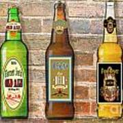 Craft Beer Collection On Brick Poster