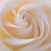 Creamy Swirl Poster