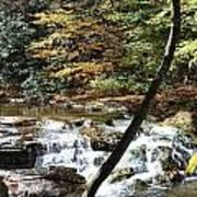 Creek 8 Poster