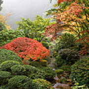 Creek At Japanese Garden In The Fall Poster