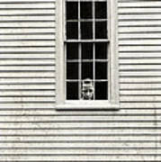 Creepy Victorian Girl Looking Out Window Poster