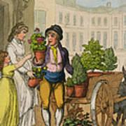 Cries Of London The Garden Pot Seller Poster