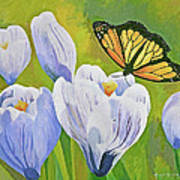 Crocus And Monarch Butterfly Poster