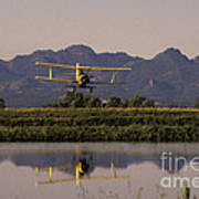 Crop Duster Applying Seed To Rice Field Poster