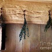 Crossbeam With Herbs Drying Poster