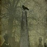 Crow On Spire Poster