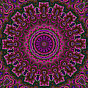 Crushed Pink Velvet Kaleidoscope Poster