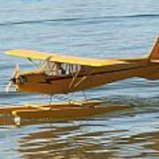 Cub On Floats Poster