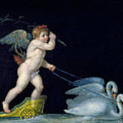 Cupid Being Led By A Pair Of Swans Poster